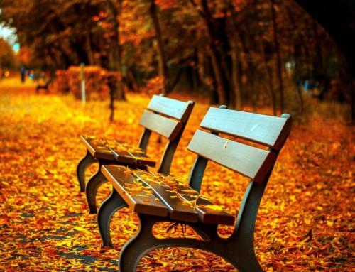 Herbst des Lebens  – Versöhnung der Erinnerungen